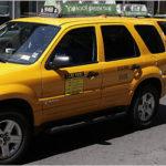 Hybrids for New York City