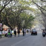 Friday Fun: How 2 Urban Communities Are Protecting Their Trees